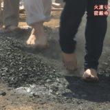 (取材日:5月20日、取材地:密厳寺)