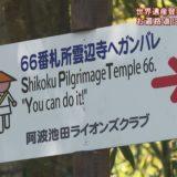 (取材日:4月4日、取材地:雲辺寺に続くお遍路道)