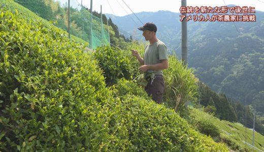 (取材日:5月13日、取材地:西祖谷山村有瀬)