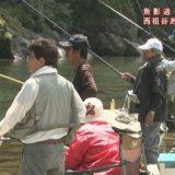 (取材日:6月9日、取材地:祖谷ふれあい公園周辺)