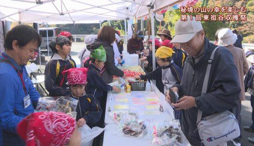 (取材日:11月9日、取材地:東祖谷和田 竜宮崖公園観光案内所)