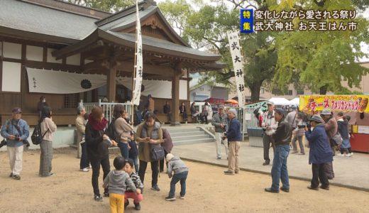 (取材日:11月24日、取材地:武大神社)