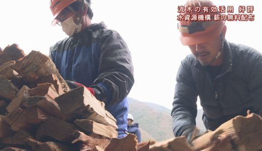 (取材日:1月25日、取材地:池田ダム流木処理場)
