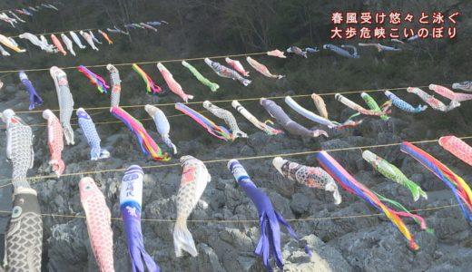 (取材日:3月23日 取材地:大歩危峡まんなか)