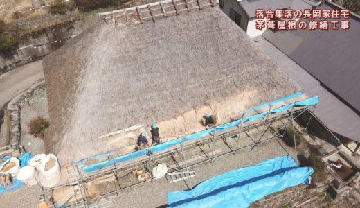 (取材日:3月9日 取材地:東祖谷落合集落)