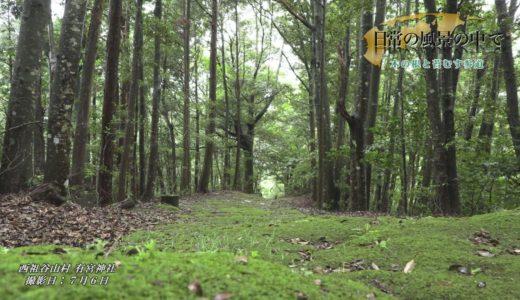 (取材日:7月6日 取材地:西祖谷山村 有宮神社)