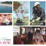 10/10(土)~10/16(金)番組表