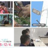 11/28(土)~12/4(金)番組表