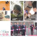 12/19(土)~12/25(金)番組表
