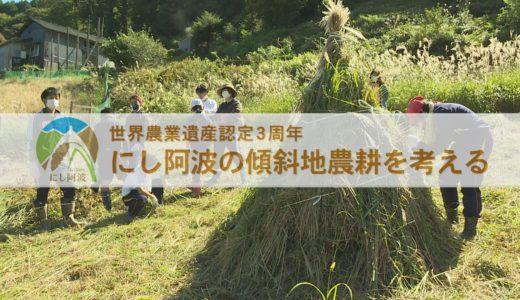 「にし阿波の傾斜地農耕を考える」放送日程のお知らせ