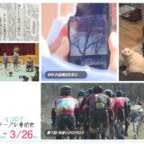 3/20(土)~3/26(金)番組表