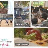5/29(土)~6/4(金)番組表