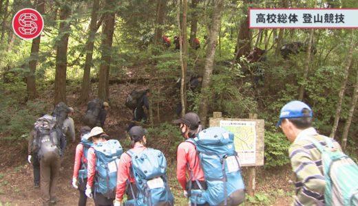 (取材日:6月6・7日 取材地:竜王山山系)