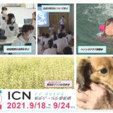 9/18(土)~9/24(金)番組表